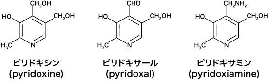 図2  ビタミンB6の構造式