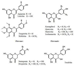 図3. 植物に含まれるフラボノイド類(flavones, flavonol, flavanones, flavanoles)9)
