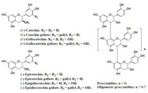 図4. 植物に含まれるフラボノイド類(flavanol, procyanidines)9)
