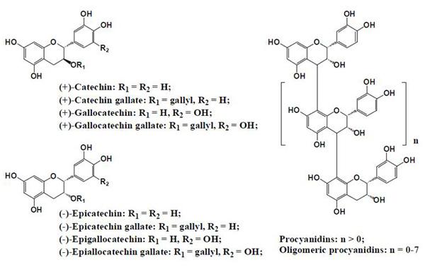 図4. 植物に含まれるフラボノイド類(flavanol, procyanidines)