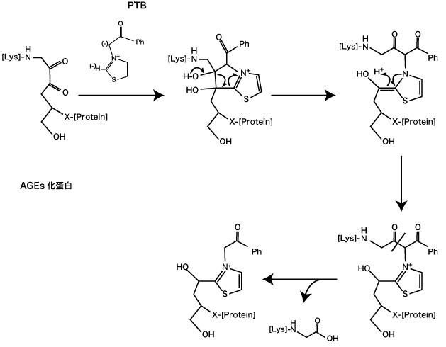 図 3.  N-phenacylthiazolium bromide (PTB) のAGEs架橋分解作用(Vasan S, et al (1996) 7))