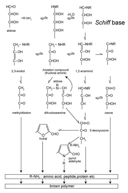 図 1.食品の褐変化における糖化反応