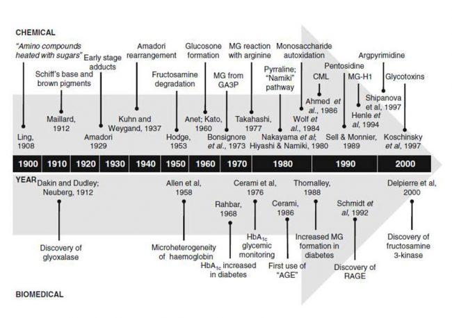 1900年から2000年までの糖化研究の歴史