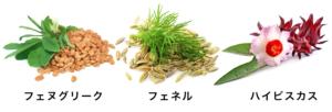 サトナシール 3種のハーブ